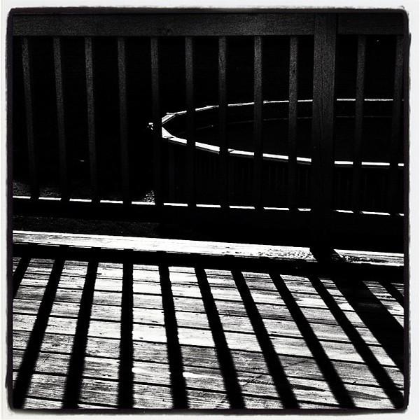 Sticks in Silhouette.