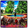 Fountain of Knowledge Wrapped in Color! #btv #vt