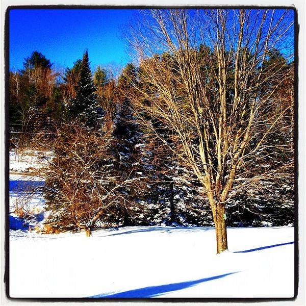 Good Morning Vermont! #milton #btv #vt