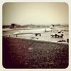 #BTV-EWR on Embraer ERJ-145. #travel #VT #Newark #airport #plane #aircraft #aviation