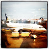 Continental Airlines, #Boeing #737, #Newark #NJ #aviation #aircraft #airport
