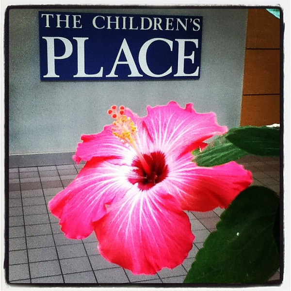 Nice touch to the Children's Place. #btv #vt #hibiscus #flower