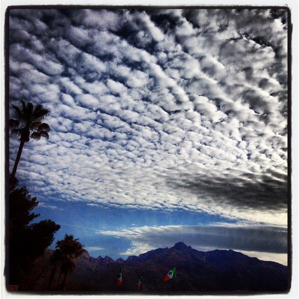 """#clouds #sky #tucson #az #tree via Instagram <a href=""""http://instagr.am/p/WhVDdNiiuu/"""">http://instagr.am/p/WhVDdNiiuu/</a>"""