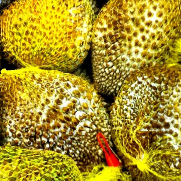Pathetic looking frozen #durian at T&T Supermarket, Ottawa. #fruit #Malaysia #smelly #delicious