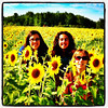 My pretty ladies in a sea of beautiful #sunflowers. #grandisle #vt