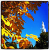 The steeple peaks. #btv #UVM #vt #foliage