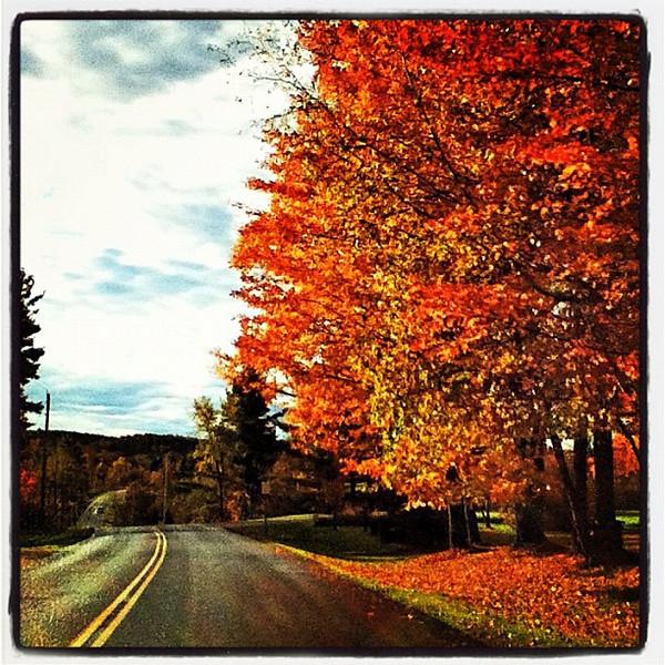 Nice drive through #foliage. #btv #milton #vt