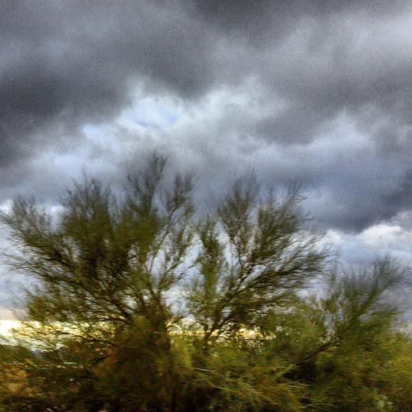 """#clouds #sky #tucson #az #tree via Instagram <a href=""""http://instagr.am/p/WqDX0ZCisO/"""">http://instagr.am/p/WqDX0ZCisO/</a>"""