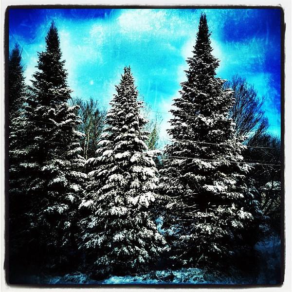 Winter makes Vermont pretty.