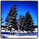Winter Wonderland. #quebec