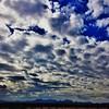 "#tucson#az#arizona#igerstucson#instagramaz #az365#azgrammers#instaaz#igersaz#igersarizona #azcentral#arizonalife#aznature#azscenery #desertscenery#azdesert#clouds#sky #cpc via Instagram <a href=""http://ift.tt/1spWMkF"">http://ift.tt/1spWMkF</a>"