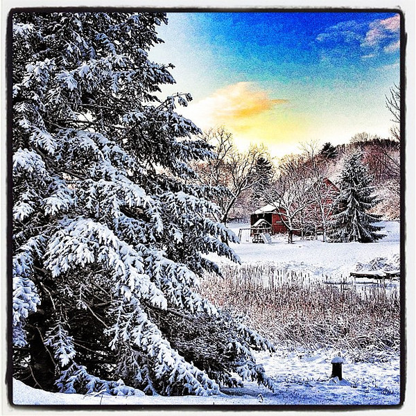 Snowy country life in #Vermont.