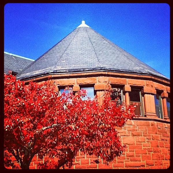 Red leaves for red bricks! #foliage #btv #uvm #vt