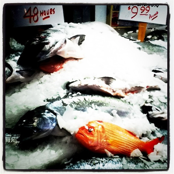 You looking at me? #Seattle #pikesplace #fish #food