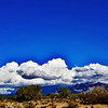"#tucson#az#arizona#igerstucson#instagramaz #az365#azgrammers#instaaz#igersaz#igersarizona #azcentral#arizonalife#aznature#azscenery #desertscenery#azdesert#clouds#sky #catalinamountains#azwx #cpc via Instagram <a href=""http://ift.tt/1iAIlLk"">http://ift.tt/1iAIlLk</a>"