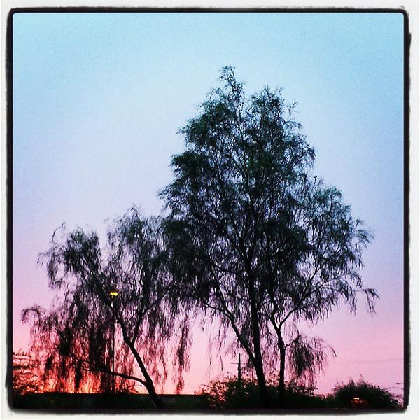 "#sky #tucson #arizona #az #igerstucson #instagramaz #sunset via Instagram <a href=""http://instagram.com/p/bnYuRHCirc/"">http://instagram.com/p/bnYuRHCirc/</a>"