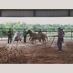 Cowboy up! 😉 via Instagram http://ift.tt/1Sr4ry8