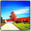 Road to awesomeness! #foliage #milton #btv #vt