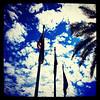 "#arizona #az #igerstucson #instagramaz #flags via Instagram <a href=""http://instagram.com/p/cDjIpxCio2/"">http://instagram.com/p/cDjIpxCio2/</a>"