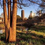 Beautiful day for a run in Houston Texas! via Instagram http://ift.tt/1P4HLmc