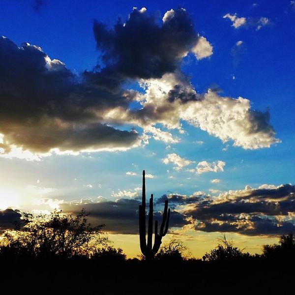 """#tucson#az#arizona#igerstucson#instagramaz #az365#azgrammers#instaaz#igersaz#igersarizona #azcentral#arizonalife#aznature#azscenery #desertscenery#azdesert#clouds#sky via Instagram <a href=""""http://ift.tt/Mbr0ud"""">http://ift.tt/Mbr0ud</a>"""