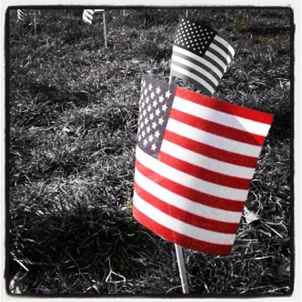 In Remembrance. #patriotic #usa #flag #btv #vt