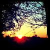 Goooooooooooood Morning! #btv #milton #VT