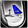 Blue Bird. #jetblue