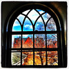 As Seen Through a Window. #btv #vt
