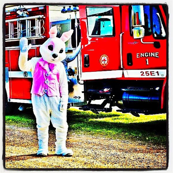 Hello Easter Bunny! #miltonvt