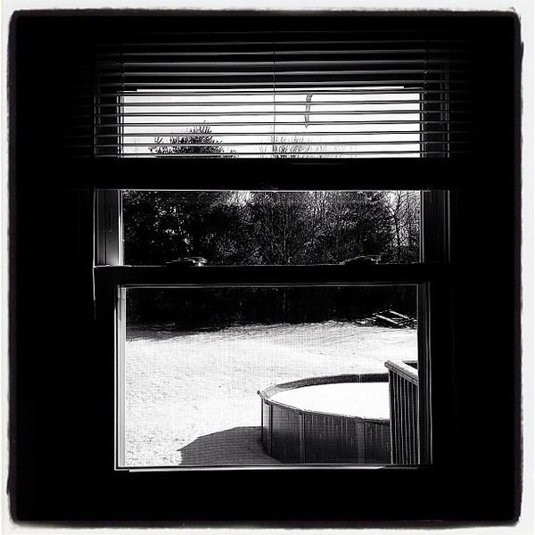 Black & White out there! #btv #milton #vt