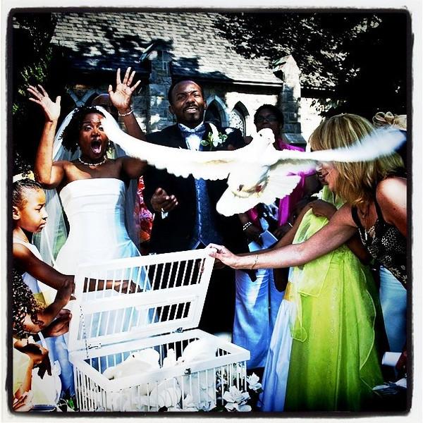 The money shot! #awesome #wedding #Montreal #Quebec #bird #dove #popular