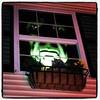 Scaryyyyyyyyy! #btv #milton #halloween