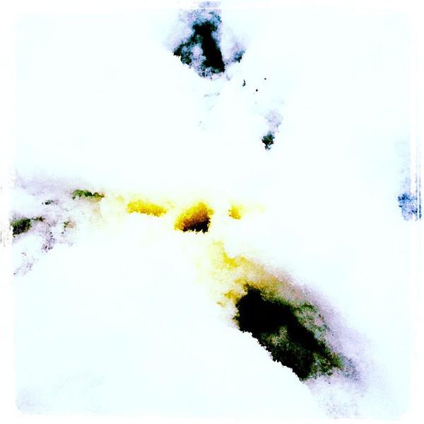 Yellow snow! Ummm.......!! #milton #btv #snow