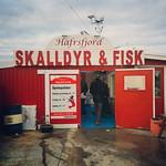 Fresh shrimp! #stavanger #norway via Instagram http://ift.tt/1t2iH6S