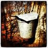 Vermont Sap Buckets. #miltonvt #btv #vt