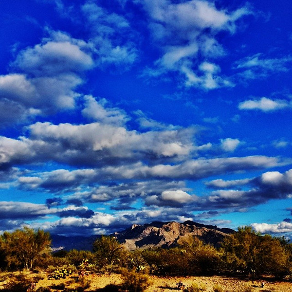 "#tucson #az #arizona #igerstucson #instagramaz #az365 #azgrammers #instaaz #igersaz #igersarizona #azcentral #arizonalife #aznature #azscenery #desertscenery #azdesert #clouds #sky #cpc via Instagram <a href=""http://ift.tt/1e8AJy3"">http://ift.tt/1e8AJy3</a>"