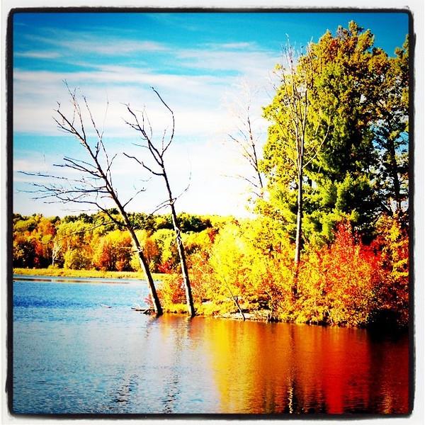 Another #lake #foliage. #colors #fall #Arrowhead