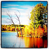 Another #lake #foliage. #colors #fall #Arrowhead