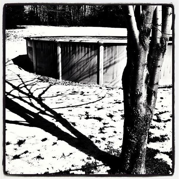 Shadows & Ice. #btv #vt #miltonvt