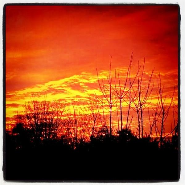 The burning sky! #sunset #silhouette #btv #VT