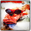Even #fish have to look cool. #Seattle #pikesplace #market #seafood