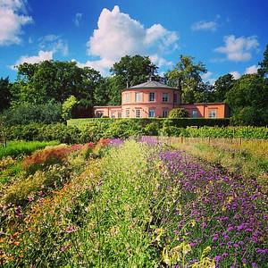 Feels like the south of France... #stockholm via Instagram http://ift.tt/1o5gM9p