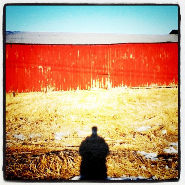 My shadow is checking out the scenery. #vt #btv #silhouette #sunrise #barn