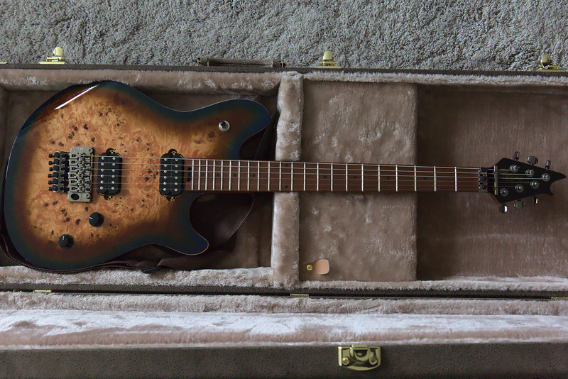 In the case: EVH Wolfgang Standard Exotic  - Midnight Sunset