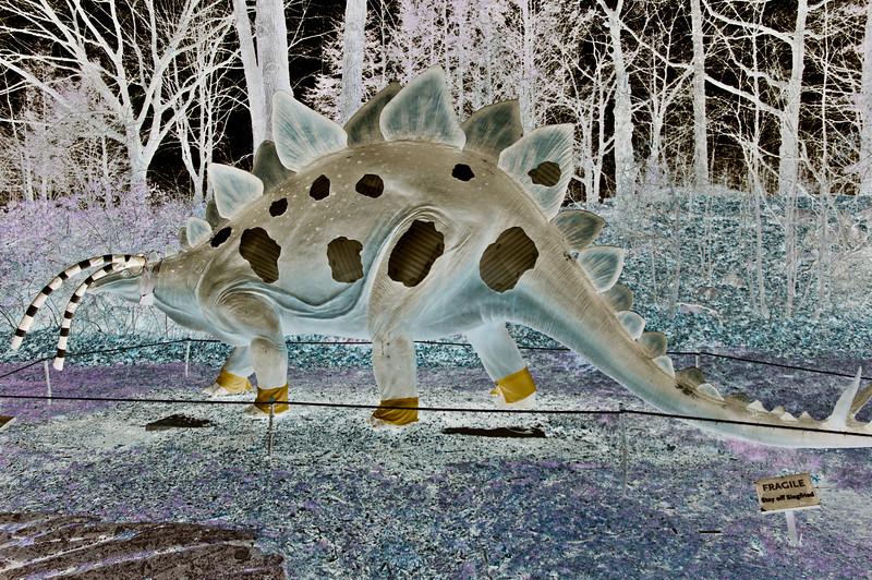 ALB Stegosaur invert