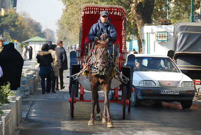 Tehran: Horse and carriage that was doing a brisk trade.