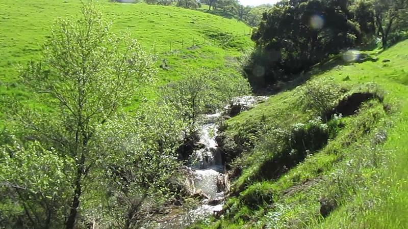 Gushing, rushing Irish Canyon Creek.