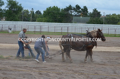 Iron County Fair 2014