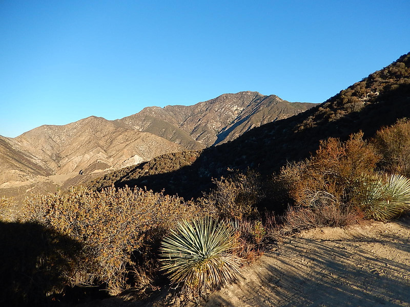 Rattlesnake Peak.